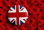brexit love
